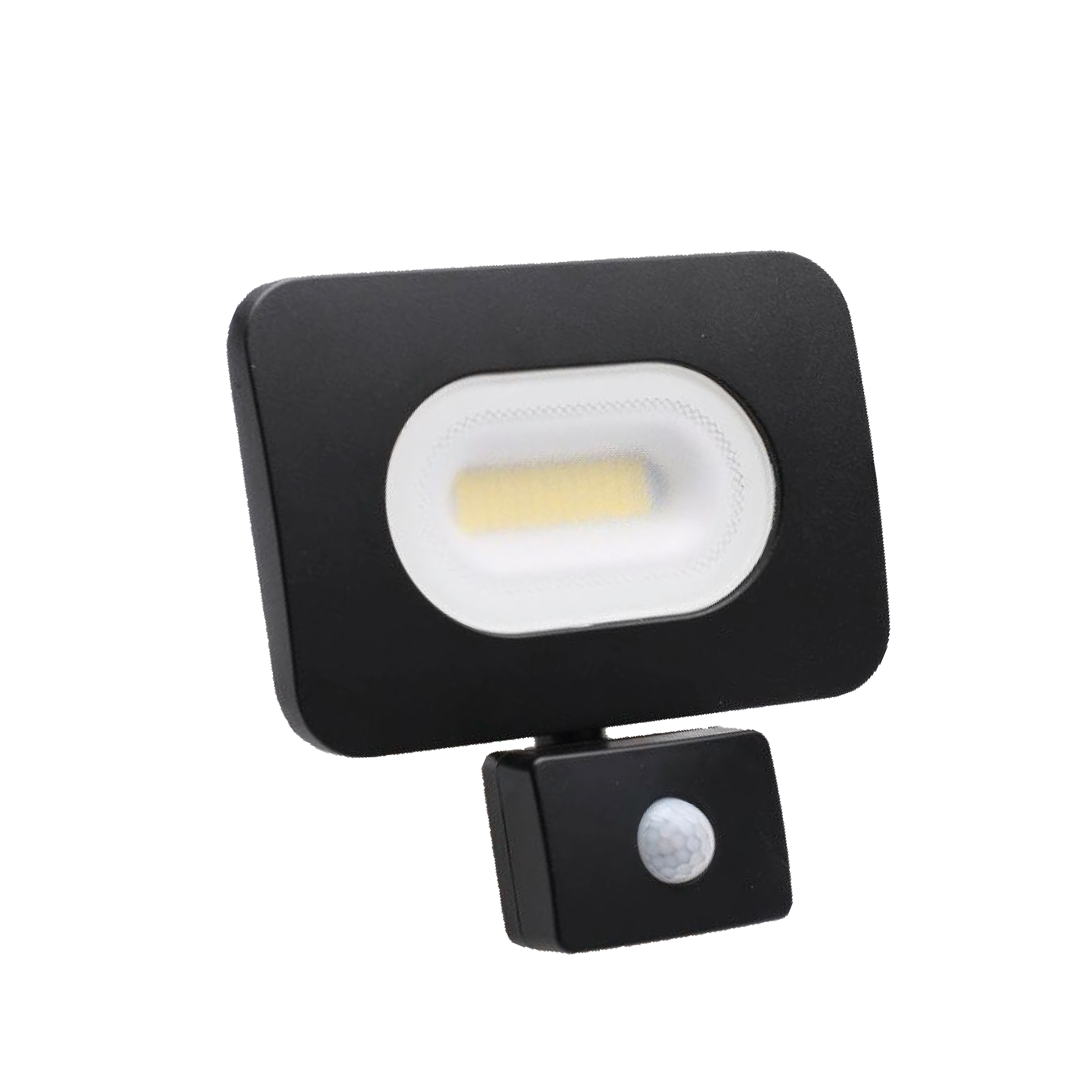 Slimline LED Floodlight w/ PIR
